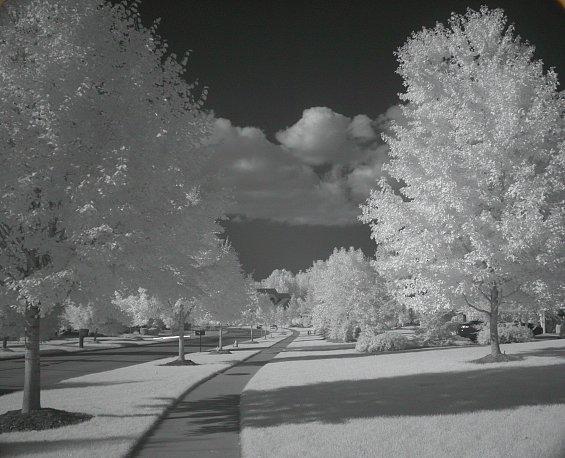 20021116.jpg